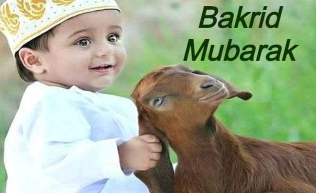Bakrid Special: आखिर क्यों दी जाती है बकरीद पर बकरों की कुर्बानी, वजह जान उड़ जाएंगे होश