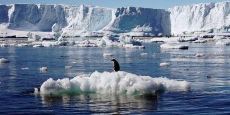 अंटार्कटिका : ग्लोबल वार्मिंग की वजह से रिकॉर्ड किया गया अब तक का अधिकतम तापमान