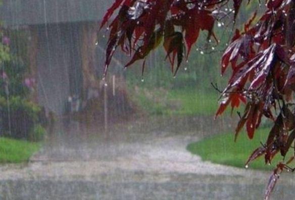 जुलाई की इस तारिख तक देश में सक्रिय होगा मानसून, बारिश की फुहारों से होगा ठंडक का अहसास
