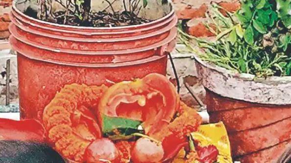 बिहार की राजधानी पटना में पपीते की पूजा करने उमड़ी भीड़, वजह जान चौंक जायेंगे आप