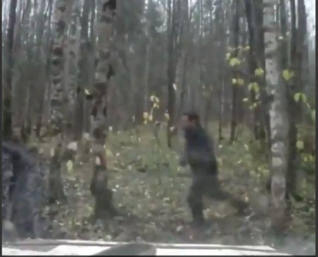 VIRAL Video: जंगल मे शख्स कर रहा था कुछ ऐसा, अचानक सर पर गिरा एक पेड़ और फिर…