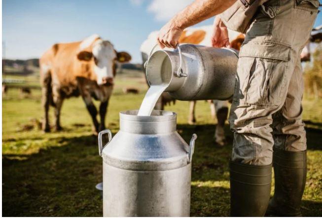 नकली दूध पर Supreme Court आदेश का दरकिनार, भारत का भविष्य बन रहा है भयानक बीमारियों का शिकार