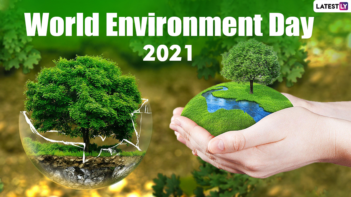 विश्व पर्यावरण स्वास्थ्य दिवस 2021: जानिए इतिहास, महत्व और विषय