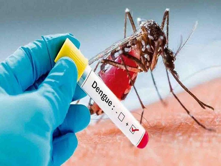अब Dengue-Viral से कराहा यूपी : 100 से ज्यादा मरीजों की मौत, सर्वाधिक 75 मौत सिर्फ फिरोजाबाद में